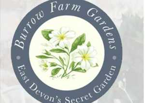 Burrow Farm Gardens